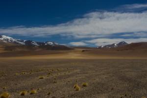 Desert 24