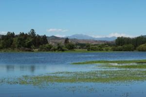 Lakes 19
