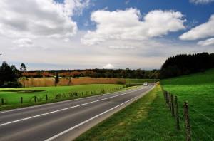 Roads 205
