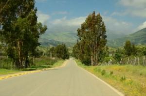 Roads 323