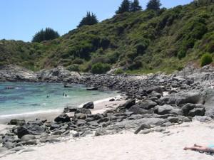 Seaside 8